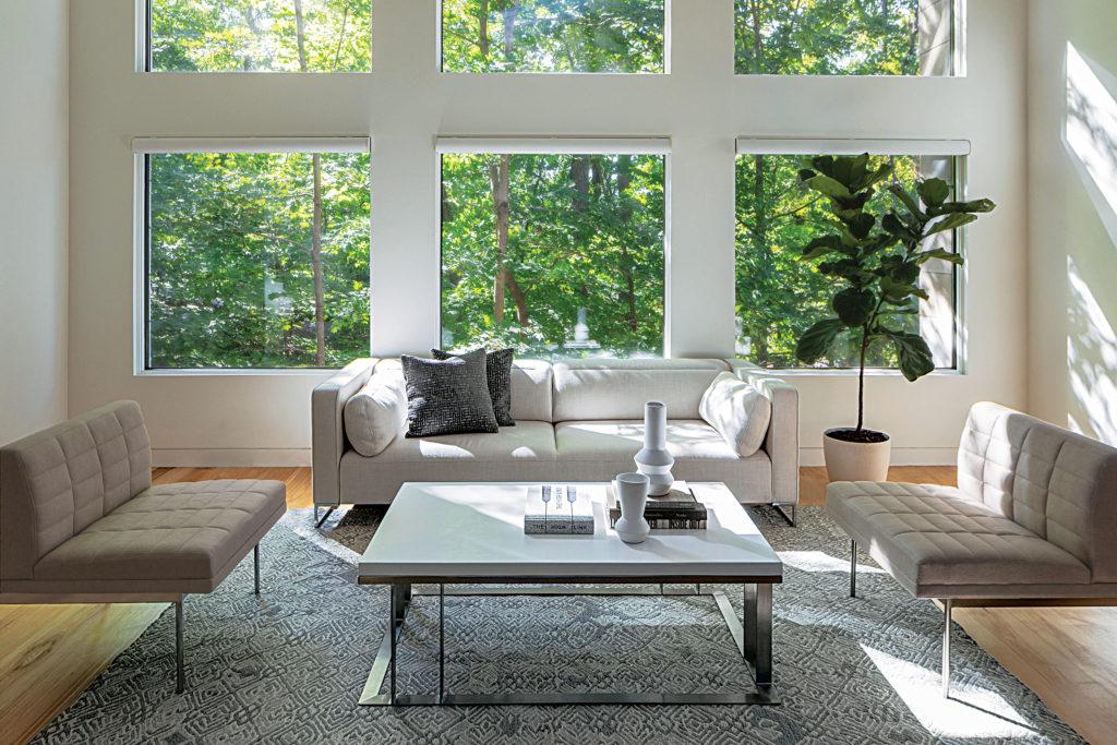 Clean Lines in Living Room